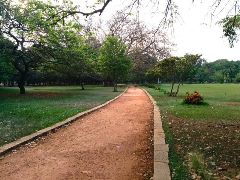 lalbagh botanical garden, pathway