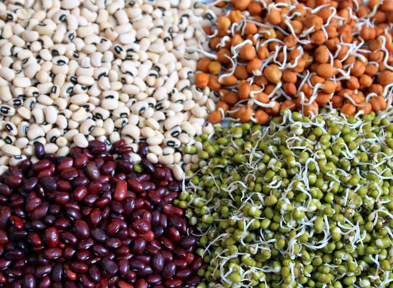 HealthyFood_Beans